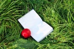 нектарин зеленого цвета травы книги открытый Стоковые Изображения RF