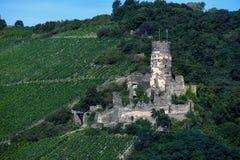 Немецкие руины замка в виноградниках стоковые изображения