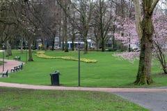 Немецкий парк города в предыдущей весне стоковое фото rf
