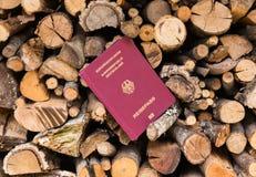 Немецкий пасспорт вставленный между пиломатериалом Стоковое фото RF