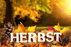 Немецкое слово на осень Стоковое фото RF