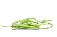 Немногие стручки свежих длинных фасолей (unguiculata Vigna) Стоковые Изображения