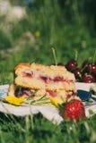 Немногие части вишни испекут на белой плите помещенной на лужайке стоковая фотография