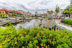 Немногое желтоватый цветок со старыми зданиями, отражение на воде, и предпосылка облачного неба, старая зона туризма города стоковая фотография