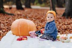 Немногое милый ребенок в парке на желтых лист с тыквой в осени стоковые фотографии rf