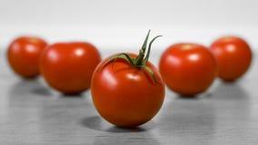Немного красных зрелых томатов на таблице для здорового питания Стоковая Фотография