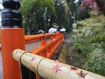 Немного красных кленовых листов положенных на bambooo стоковая фотография rf