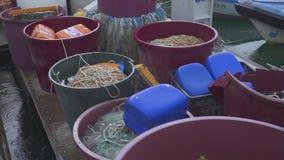 Немного старых vesselis рыбной ловли с плавными сетками припарковали около пристани сток-видео