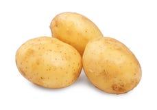 Немного сырцовых, органических и свежих молодых картошек, изолированных на белой предпосылке 3 чистое и трудные русые картошки Стоковые Изображения
