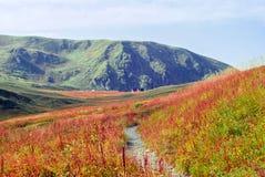 Немножко запачканный ландшафт осени солнечный высокогорный на Кавказ с путем на переднем плане и крышами хижин в расстоянии стоковая фотография