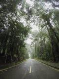ненастная дорога Стоковые Изображения RF