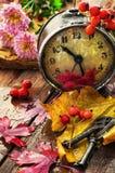 Ненастная погода с упаденными листьями Стоковая Фотография RF