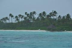 Ненастная тропическая береговая линия Стоковые Фотографии RF