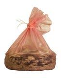 Ненужная сумка сора кота Стоковые Изображения