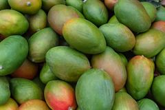 Необработанное свежее БИО манго для продажи на рынке фермеров стоковые фотографии rf