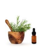 необходимый rosemary масла травы Стоковая Фотография RF