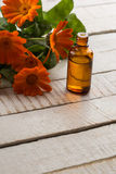 Необходимое масло ароматности от calendula Стоковые Изображения RF