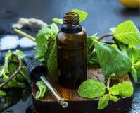Необходимое масло мяты в коричневой стеклянной бутылке с капельницей, травяной я Стоковая Фотография RF