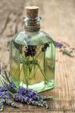 Необходимое травяное масло лаванды с свежими цветками Стоковая Фотография