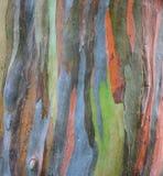 Необыкновенная покрашенная текстура расшивы Стоковое Фото