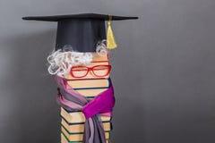 Необыкновенная яркая пожилая женщина учитель или профессор Стоковое Фото