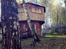 Необыкновенные деревянные дома в лесе осени Стоковое Фото