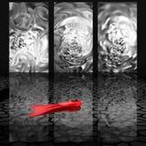 Необыкновенный случай Красный цвет и чернота белы иллюстрация вектора