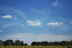 Необычно красивое небо Стоковая Фотография RF