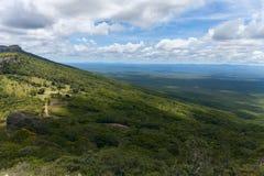 Неоглядная ширь Взгляд от гор Chiquitania bolivians Стоковое Фото