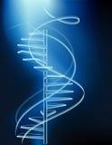 неоновые лестницы Стоковое Фото