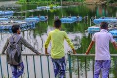 Неопознанные 3 люд средних подростка взрослых 20-24 мульти-этнических лет друзей группы стоя и наслаждаясь взгляд природы на друз стоковое фото