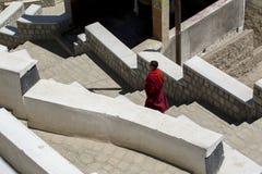 Неопознанные тибетские буддийские монахи на монастыре Hemis в Leh, Ladakh, положении Джамму и Кашмир, Индии Стоковое Фото