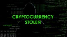 Неопознанный мужской программист крадя обеспечение безопасности учета cryptocurrency видеоматериал