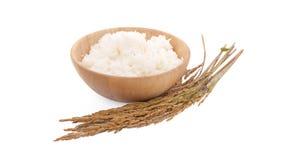 Неочищенные рисы изолированные на белой предпосылке стоковая фотография rf