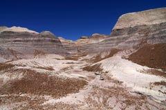 Неплодородные почвы покрашенной пустыни в национальном парке окаменелого леса, Аризоне стоковые фотографии rf