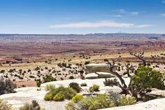 неплодородные почвы Юта Стоковая Фотография RF