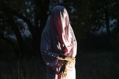 Непознаваемое маниакальное убийство в белом чистом листе в лесе f ночи стоковые фотографии rf