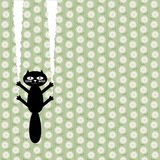 Непослушный кот Стоковые Фотографии RF