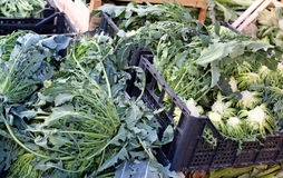 Неподдельный первоначально зеленый брокколи вызвал BROCCOLO FIOLARO в Ital стоковые фотографии rf