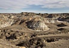 неплодородные почвы alberta стоковые фото
