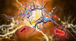 Нервная клетка и бактерии иллюстрация штока