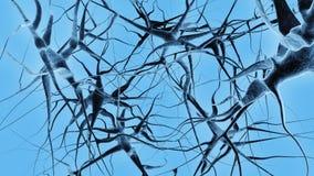 нервы Стоковое Изображение RF