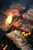 нервюры ед семьи барбекю стоковое изображение rf
