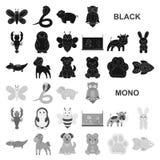 Нереалистичные черные животные значки в собрании комплекта для дизайна Иллюстрация сети запаса символа вектора животных игрушки иллюстрация штока