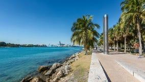 Нерезкость промежутка времени сняла людей идя на парке в Miami Beach акции видеоматериалы
