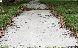 Неровный тротуар с травой и листьями Стоковое фото RF