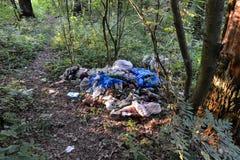 Несанкционированное место захоронения отходов в загрязнении леса природы плохая экологичность Стоковая Фотография RF