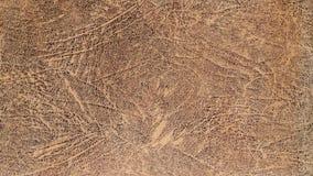 несенное кожаное предпосылки Стоковая Фотография RF