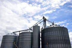 Несколько больших стальных аграрных силосохранилищ хранения используемых для обрабатывать землю стоковое фото rf