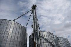 Несколько больших стальных аграрных силосохранилищ хранения используемых для обрабатывать землю стоковое изображение rf